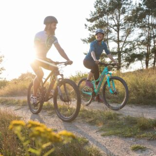 Mountainbike - Federgabel